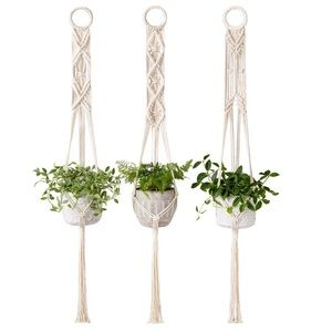 Macrame Plant Hanger Set of 3 Indoor Wall